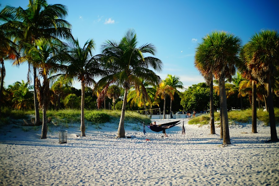 Crandon Park Beach, Key Biscayne, Miami