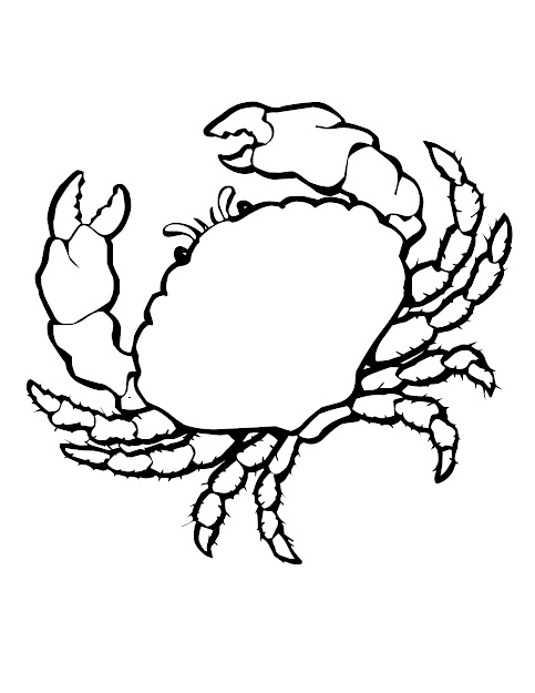 Sea Shells Coloring Pages To Make