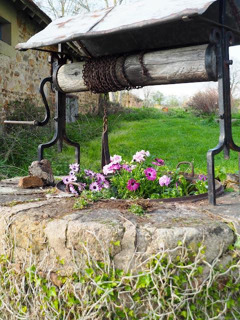 waterput, bloemen