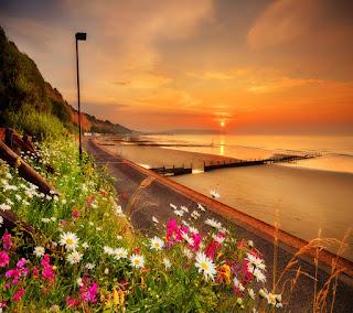 http://www.mediafire.com/view/rasfbmlc6h39g2r/beautiful__landscape(1).jpg