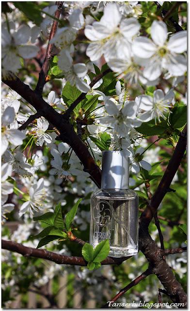 """Yves Rocher Cerisier en fleurs eau de toilette """"Вишня в цвету"""""""