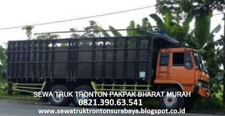 SEWA TRUK TRONTON SURABAYA PAKPAK BHARAT (SALAK) MURAH