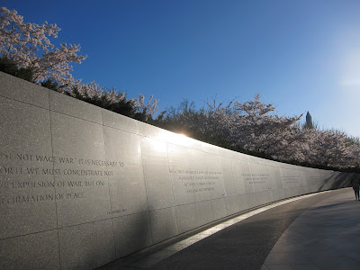 cherry blossom trees at the MLK Memorial