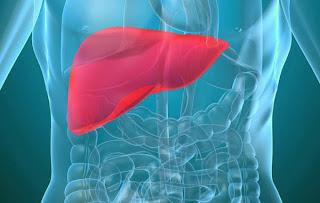 DTX Complex untuk kesihatan hati dan bantu merawat penyakit berkaitan organ hati
