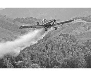 avion efectuando fumigacion