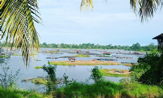 "Danau Teluk and its ""tambak ikan"""
