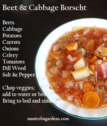 Bowl of borscht with recipe