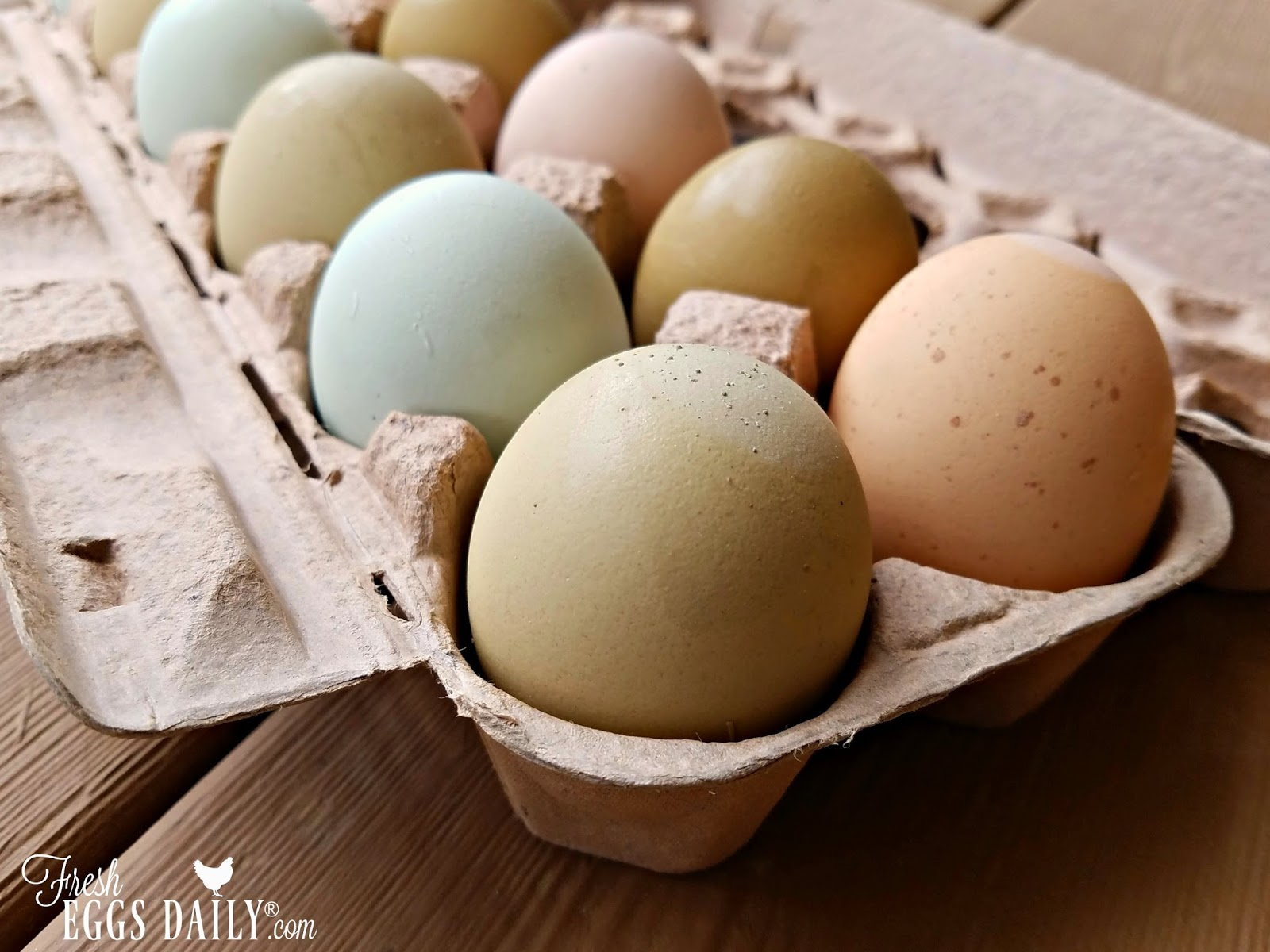 7 Tips to Help You Sell Your Farm Fresh Eggs For More ...1600 x 1200 jpeg 229 КБ