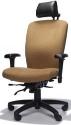 Ray Executive Office Chair by RFM Preferred Seating