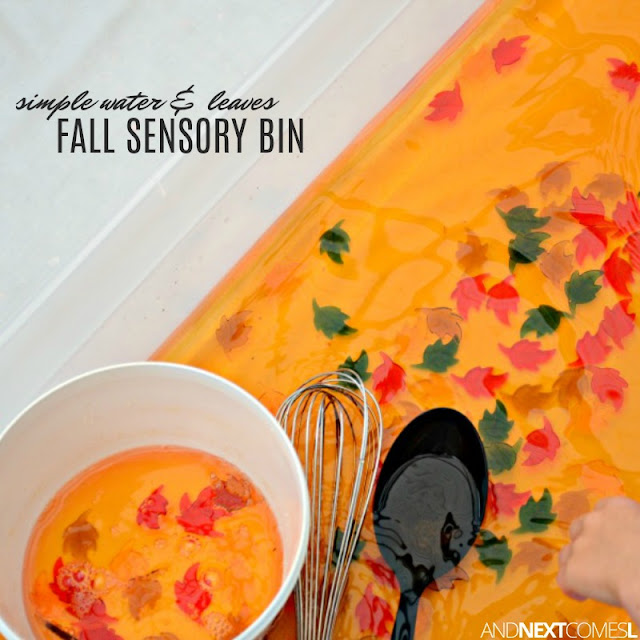Super simple fall sensory bin for toddlers and preschoolers