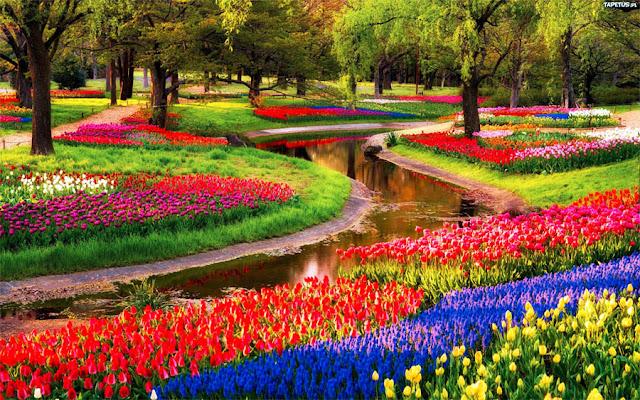 Công viên cảnh quan dự án Lavila lấy cảm hứng từ công viên Keukenhof Hà Lan.