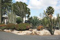 HaKaktusim Garden - The Cacti Garden in Holon