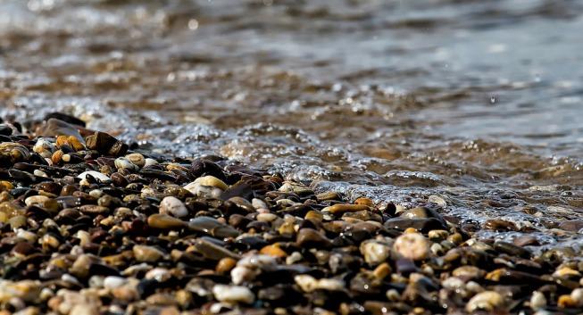 Deniz Çakıl Taşları