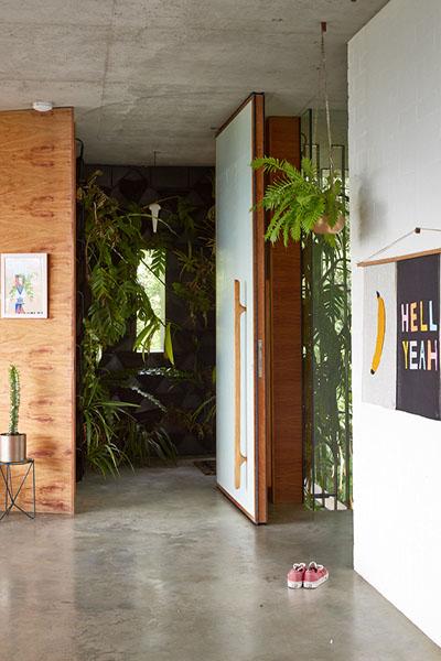 plantes vertes dans la maison intérieur extérieur