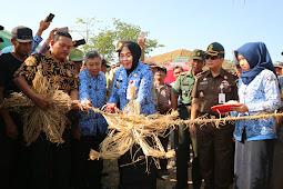 Festival Jerami Banjarejo Dibuka Oleh Bupati Grobogan