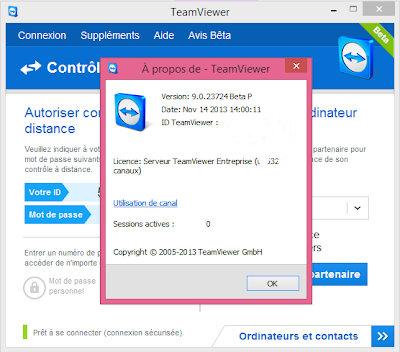 older version of teamviewer