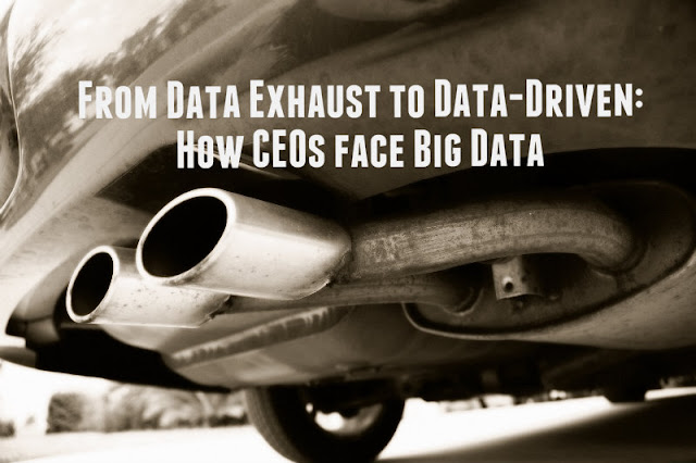 From Data Exhaust to Data-Driven: How CEOs face Big Data