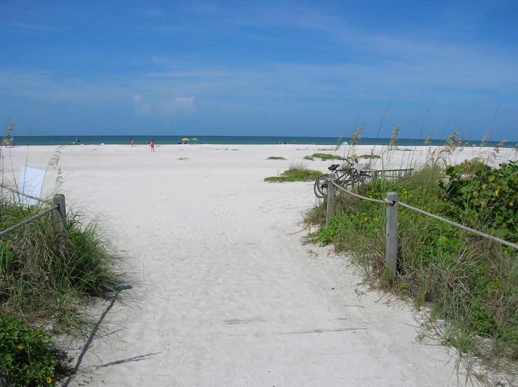 Sanibel Island Florida: Julia Broadbooks: Patience And Prudence