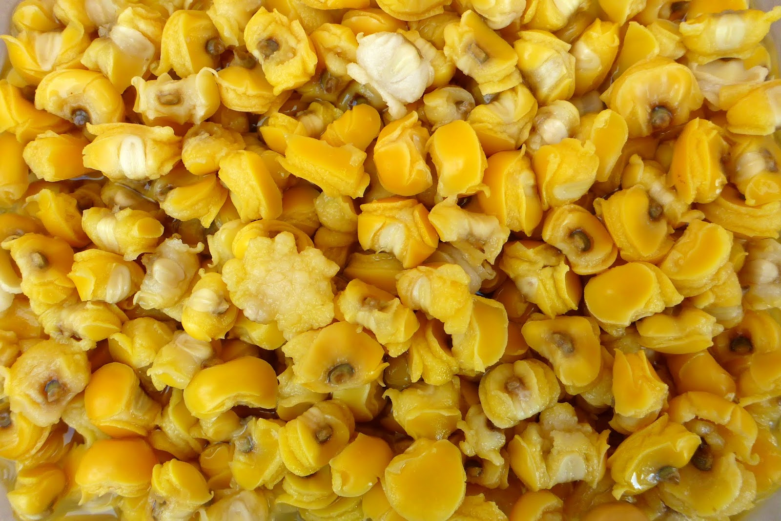 From seed to table nixtamalized corn for posole the cooked posole can be eaten hot out of the pot with just some butter or whatever seasoning you desire a classic mexican dish that features posole is ccuart Choice Image