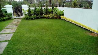 Jasa Buat Taman,Tukang Taman,Jasa Pembuat Taman,Jasa Renovasi Taman,Jasa Pembuat Taman Minimalis,Tukang Rumput Taman,Jual Rumput Taman,Tukang Taman Murah dan Profesional