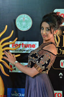 Sanjjanaa Galrani aka Archana Galrani in Maroon Gown beautiful Pics at IIFA Utsavam Awards 2017 04.JPG