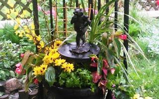 Interesting Container Gardening Idea