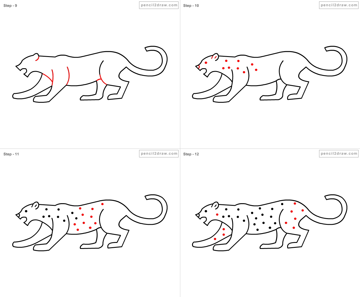 Snow leopard drawing for kids