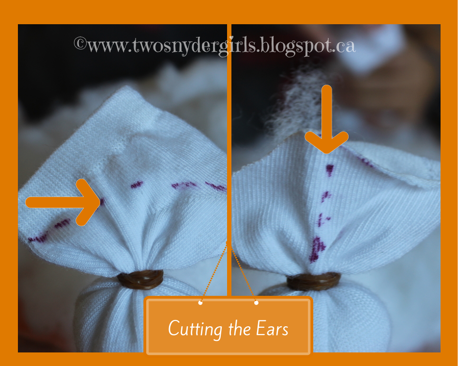 Instructions for cutting the ears