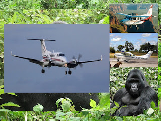 Affordable 3 days gorilla tracking tour fly to Bwind National Park from Entebbe International Airport