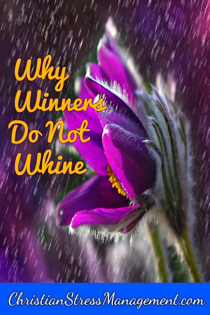 Why winners do not whine