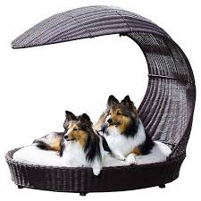 Make a DIY Dog Bed for Your New Dog