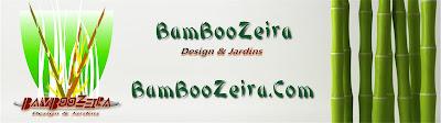 http://www.bamboozeira-loja02.vai.la