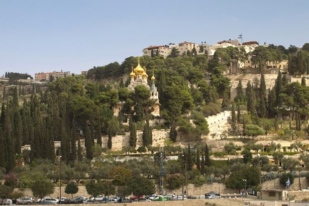 Beautiful: the Garden of Gethsemane in Jerusalem as it looks from the ground (Image: AFP)