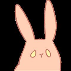 Multicolor rabbit