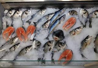 kuşadası balık restaurant kuşadası balıkçı kuşadası balık ekmek