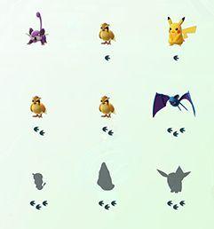 Nearby pokemon, arti jejak kaki di bawah pokemon