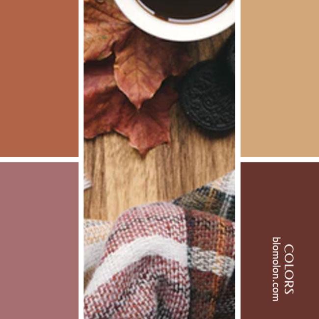variedad_en_color_combinacion_37