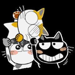 CAT cat CAT (ver. EN)