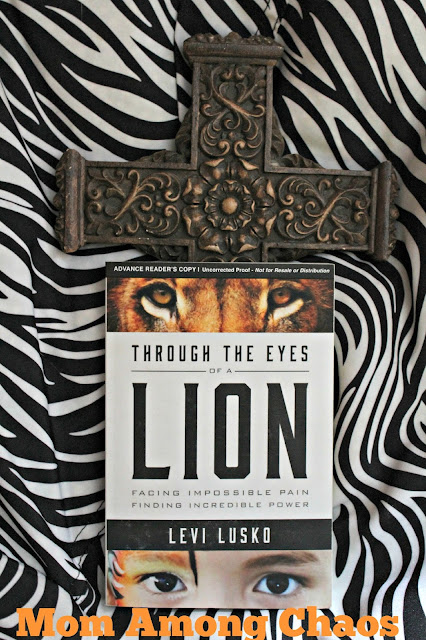 Through the Eyes of a Lion, Levi Lusko, lion, God, book review, #FCBlogger, family christian, soul, self help,