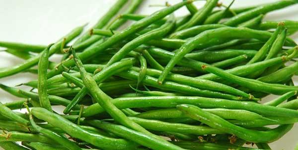 فوائد الفاصوليا البيضاء والخضراء