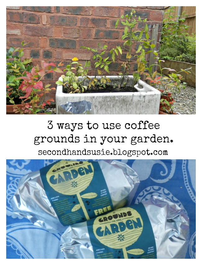 3 ways to use used coffee grounds in the garden. Use coffee for top dressing acid loving plants, in worm composting and in your compost bin. secondhandsusie.blogspot.com #composting #coffeegrounds #gardening #wormcomposting