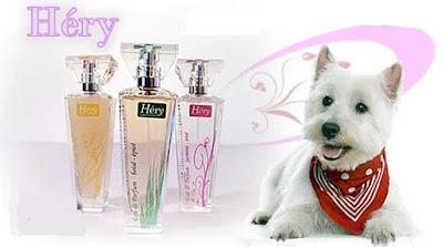 Perfumes para gatos y perros