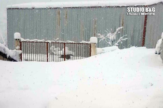 Απίστευτο χιόνι στην Σκοτεινή - Χωρίς ρεύμα το χωριό