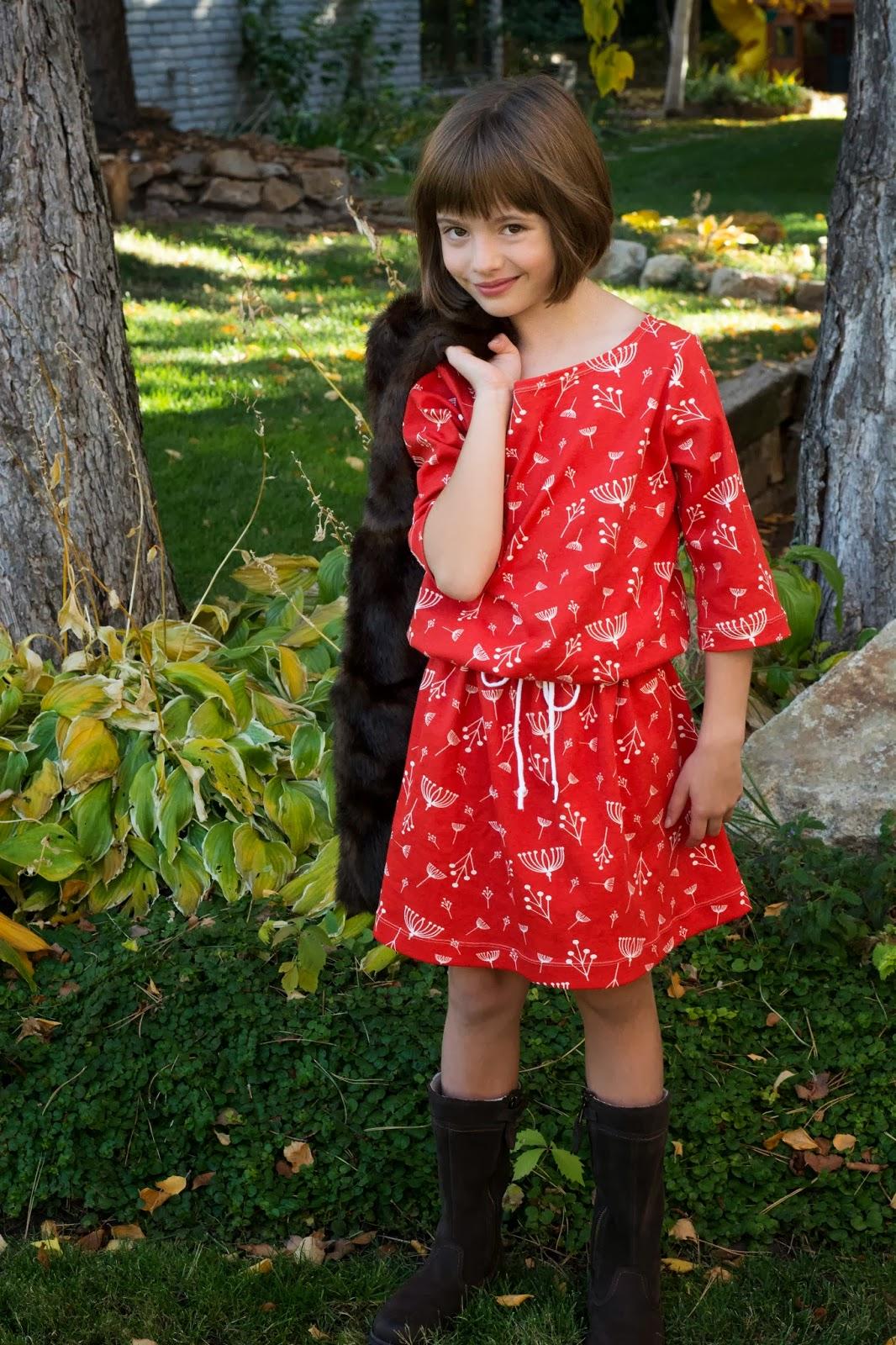 Aesthetic Nest Giveaway Charley Harper Bateau Neck Dress Kit