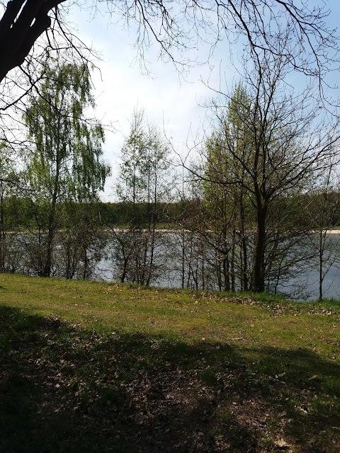 20170430 160207 - Wandelen op het Rutbeek