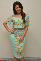 Nikki Galrani in Cute Dress Dress At Marakathamani Success Meet ~  Exclusive 028.JPG