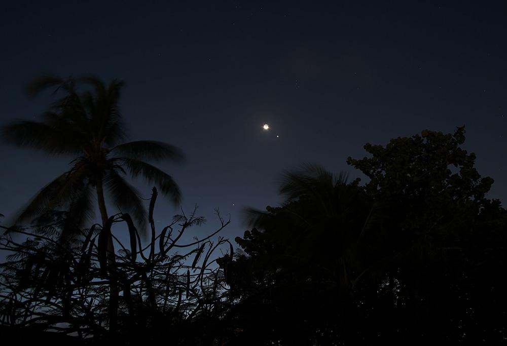 venus moons and rings - photo #14
