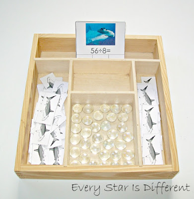 Shark Division