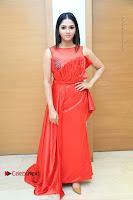 Tamil Cinema Celebrities Pos at Summer Fashion Festival 2017  0006.jpg