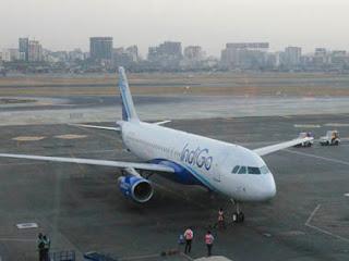 due-to-bird-hit-aeroplane-makes-emergency-landing